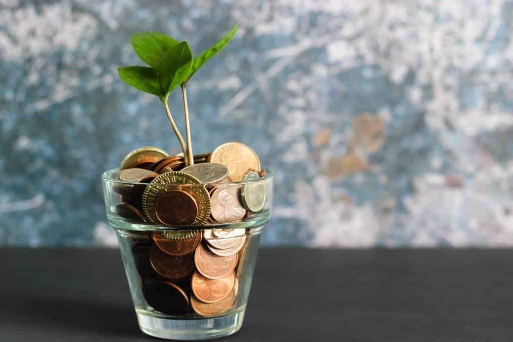 plant money coins financial goals