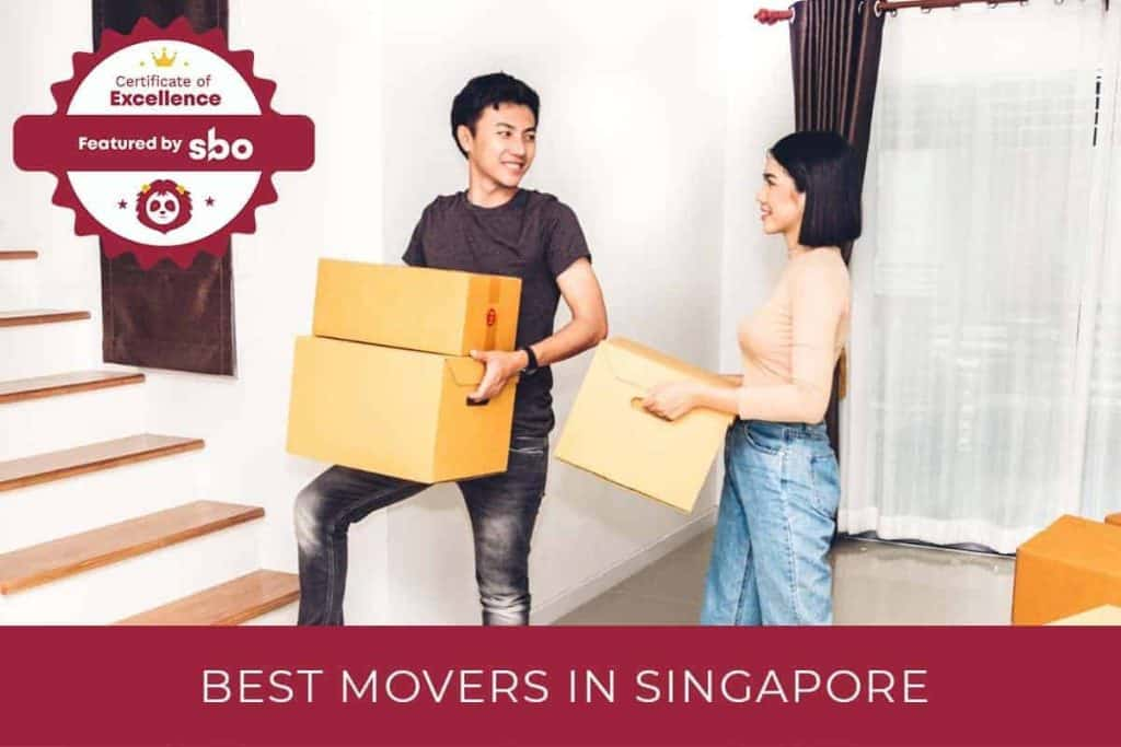 7 best movers in singapore
