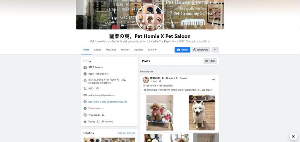 best pet sitter in singapore_pet homie