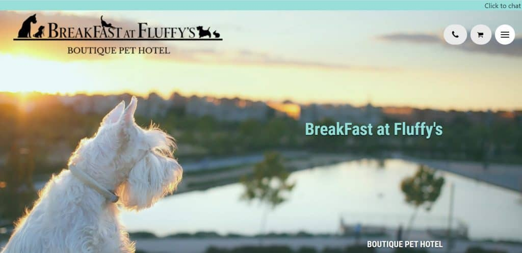 best pet sitter in singapore_breakfast at fluffy's