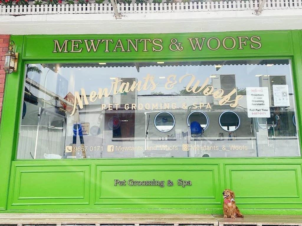 best dog grooming in singapore_Mewtants & Woofs - Pet Grooming and more