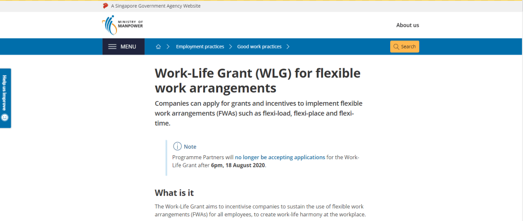 WLG business grant in singapore