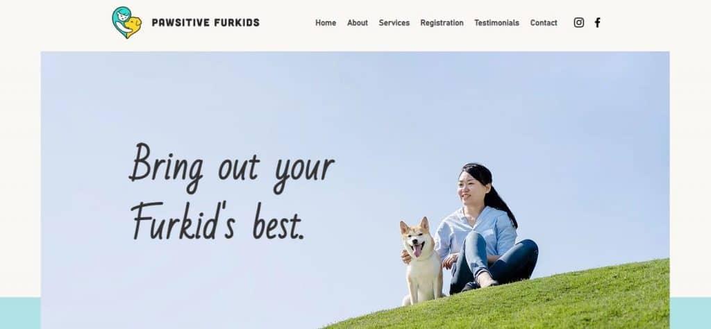 10 best dog training in singapore