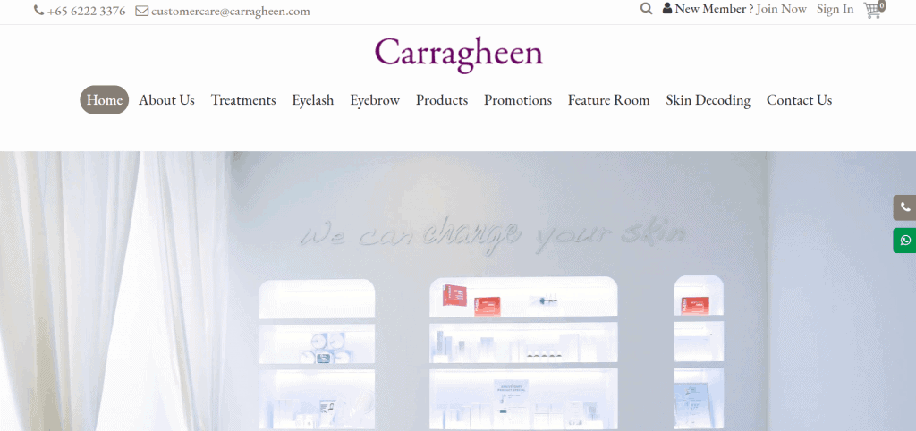 best salons for lash lift in singapore_carragheen