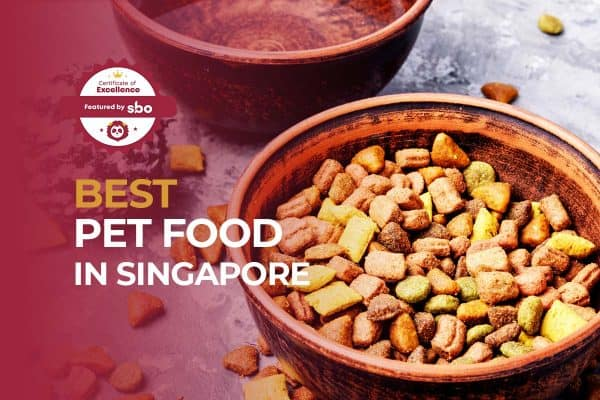 featured image_best pet food in singapore